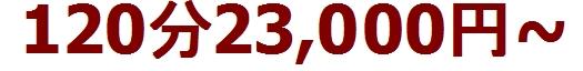 リムジン女子会の値段は120分23000円とかなりリーズナブルで格安の料金設定です。リムジンパーティーで女子会をするのがSNSで話題になり東京で流行りマツコ会議でも特集